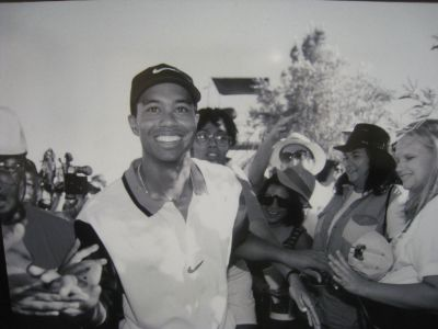 Tiger Woods Picture - Image 13