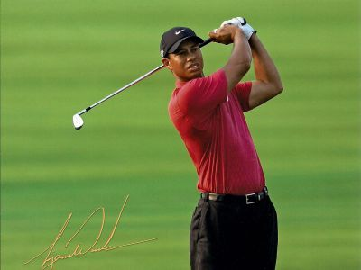 Tiger Woods Picture - Image 4